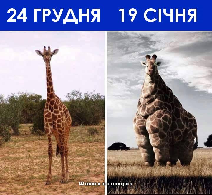 До свят і після
