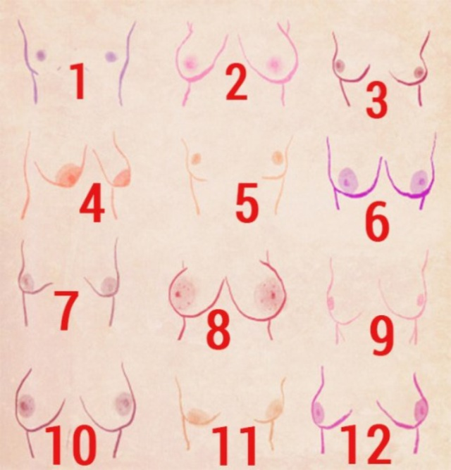 Image result for most beautiful breast shapes