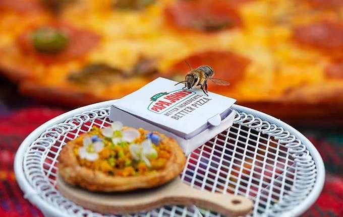 """Результат пошуку зображень за запитом """"Papa John's створили першу в світі піцу для бджіл"""""""