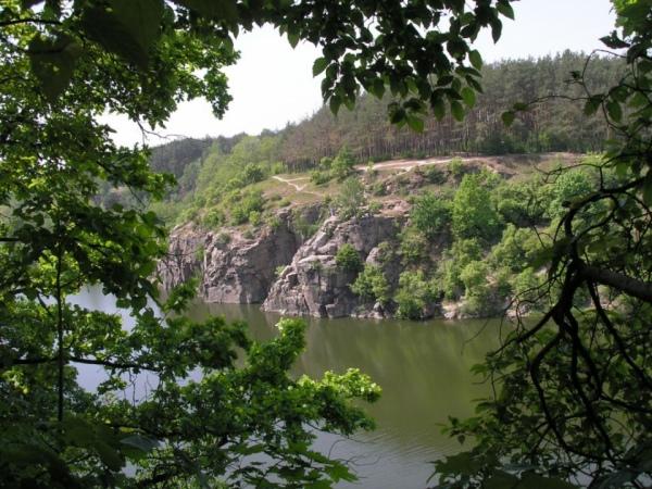 Фото - з bioweb.lnu.edu.ua