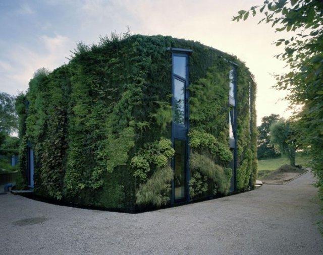 Химерні будиночки, які можна побачити лише у Бельгії - фото 357483