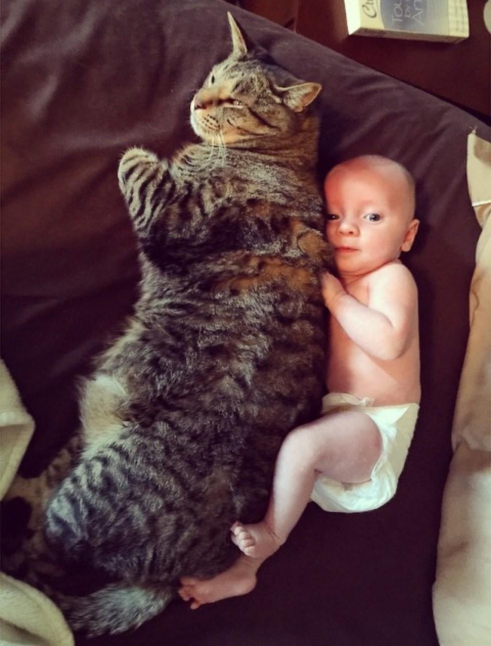Малыш, которого зовут Ас, обожает своего друга.