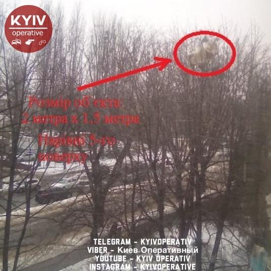 Диван на дереві. У Києві невідомі позбулися старих меблів, викинувши з вікна будинку (фото)