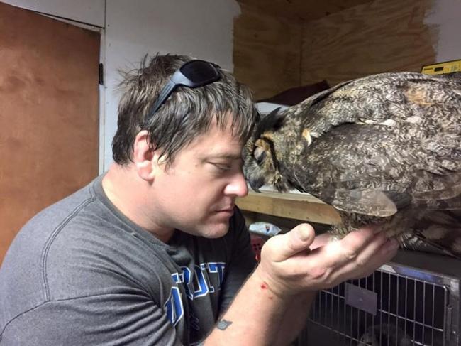 9996065-rescue-owl-hugs-man-gigi-douglas-pojeky-3-650-1465373650