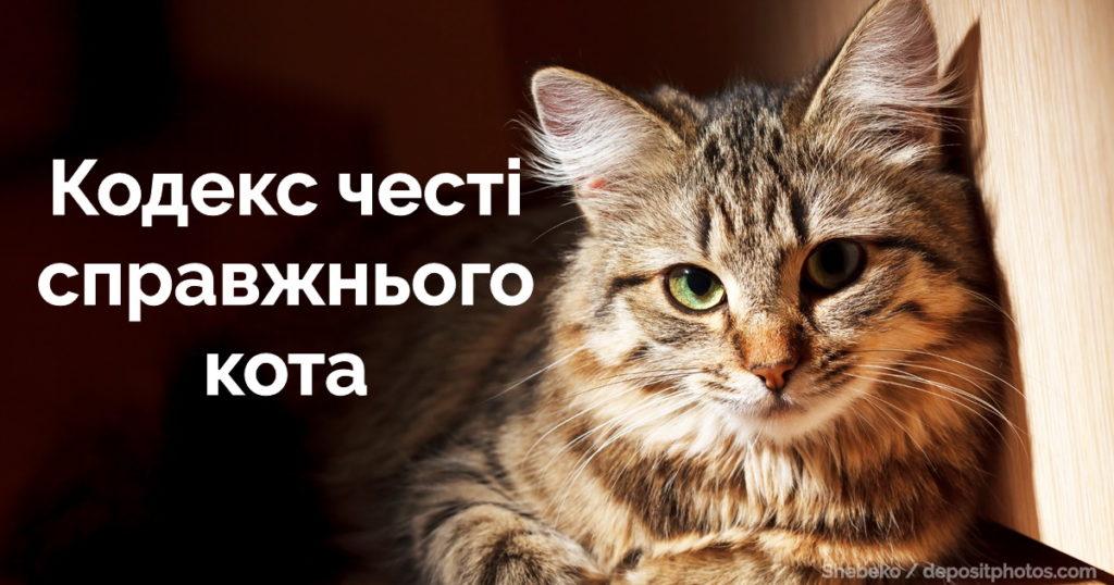 Кодекс честі справжнього кота