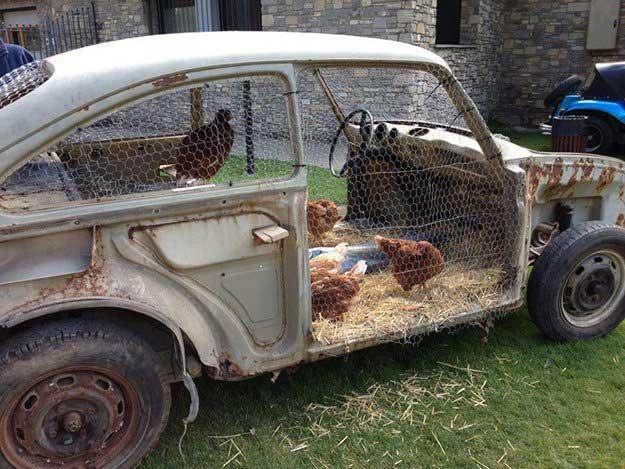 chicken-coop (19)