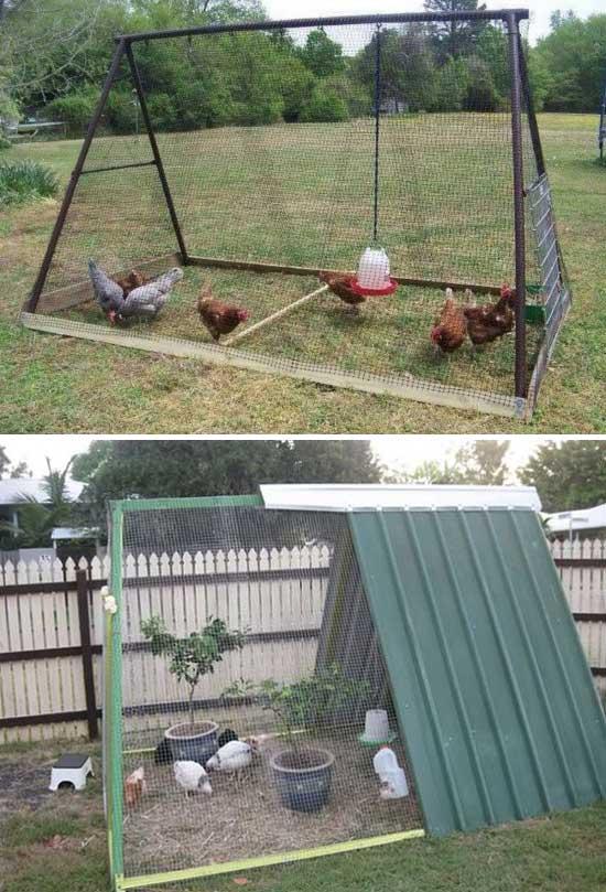 chicken-coop (7)