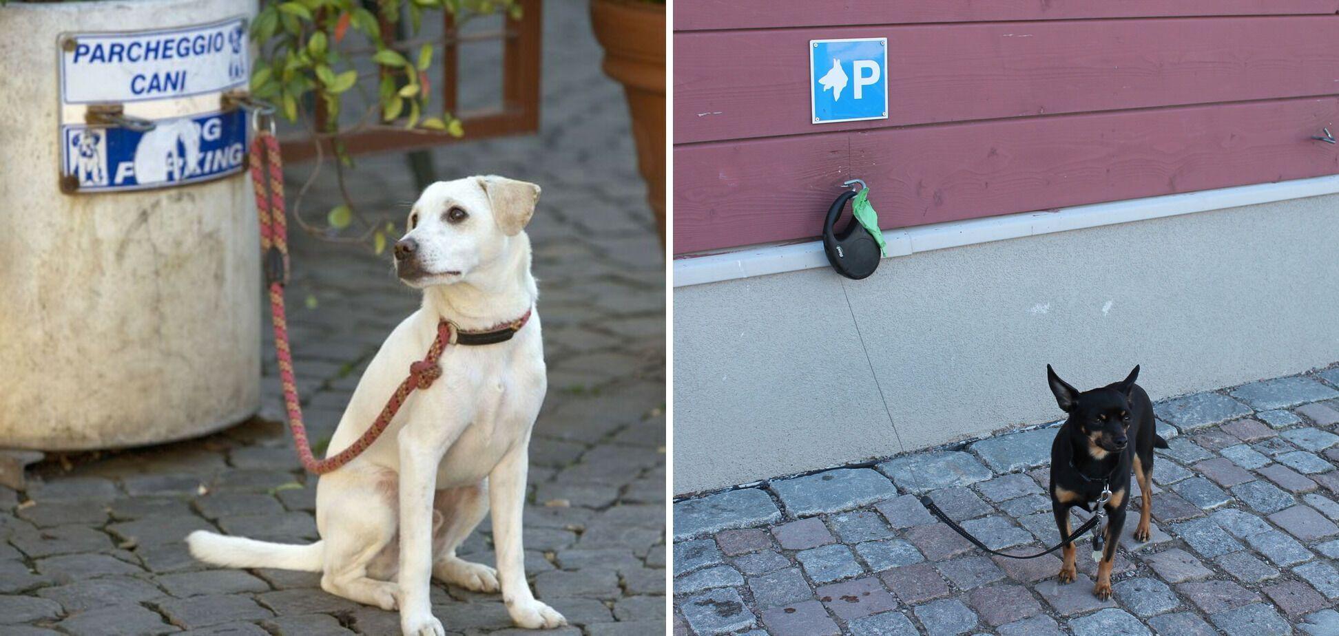 В Італії є парковки для тварин