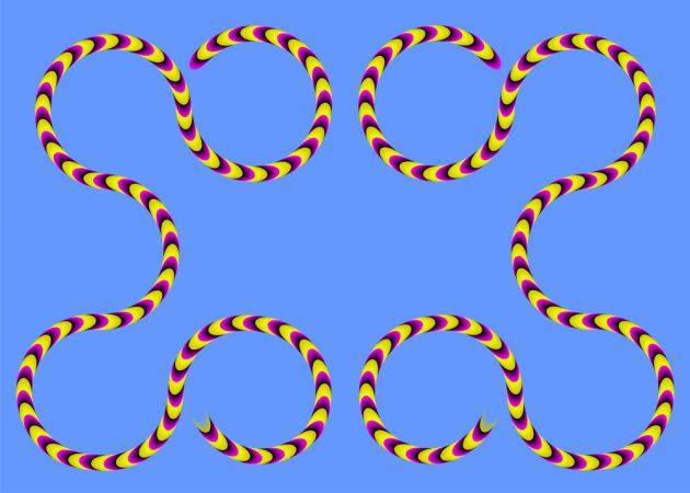 оптичні ілюзії: змії