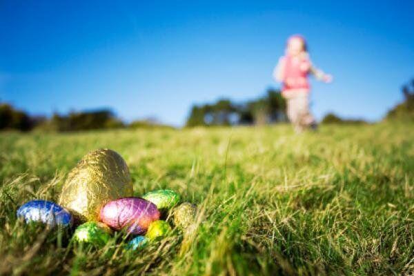 На Великдень у Франції батьки ховають шоколадні яйця в саду