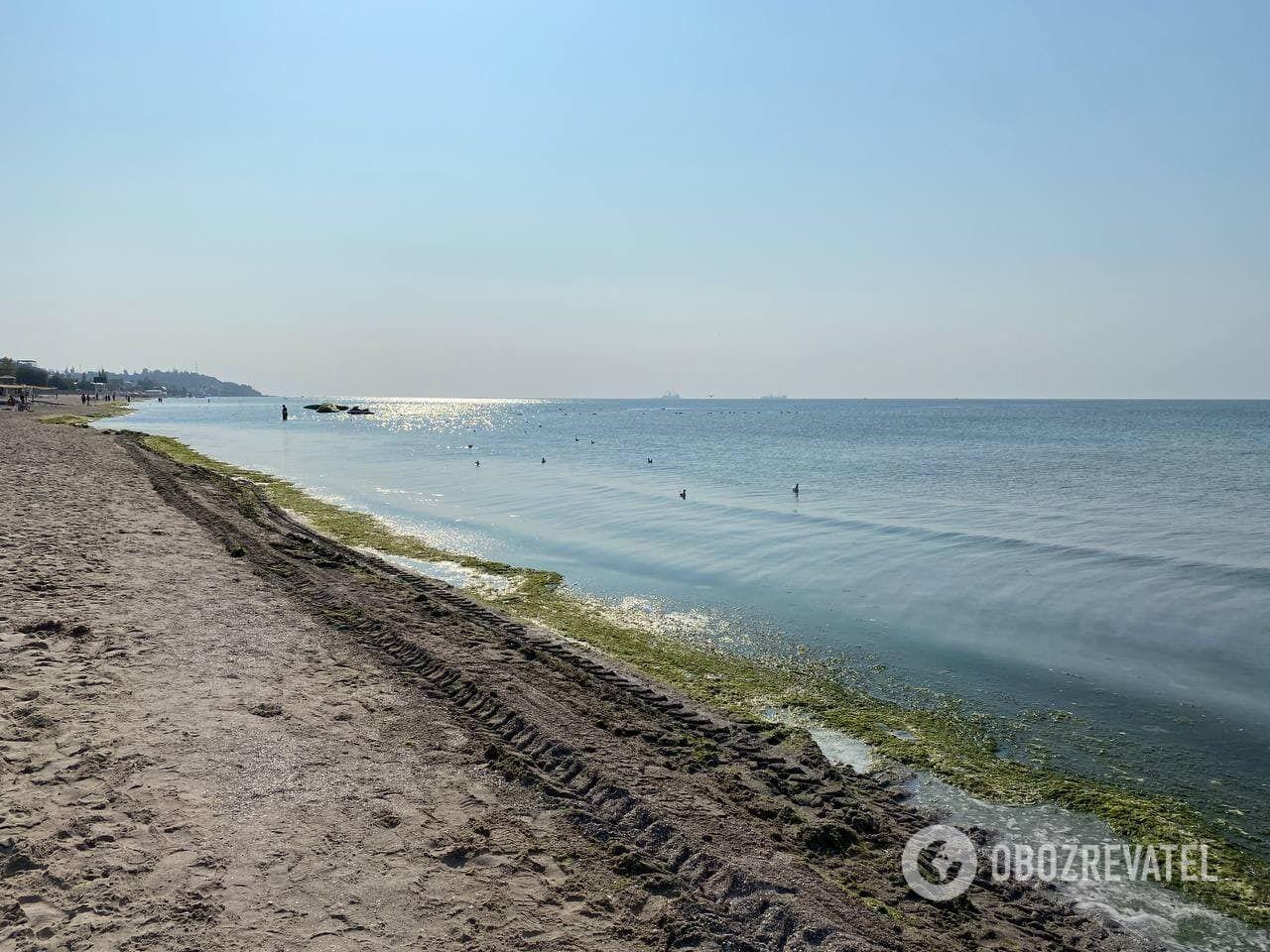 Як зараз виглядає пляж Коблево