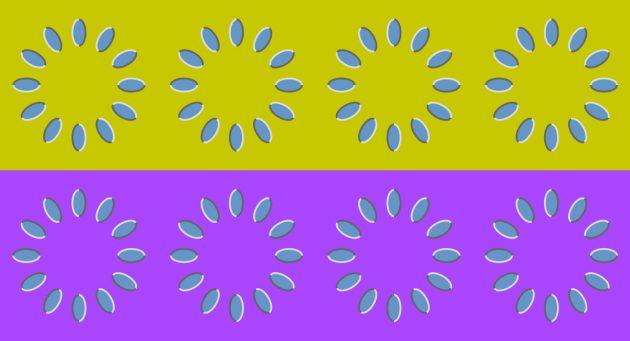 оптичні ілюзії: квіти
